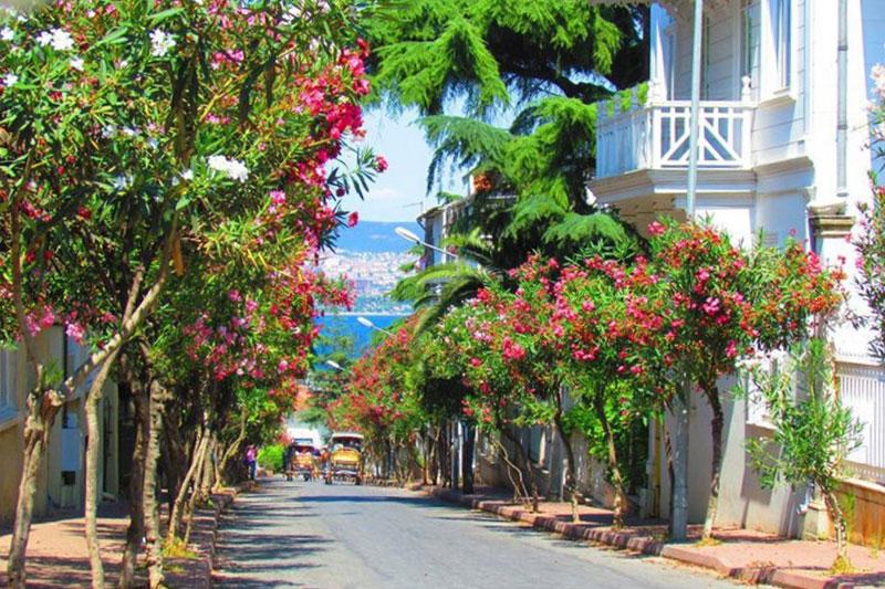 Hızlı Tren ile Şile Ağva Adalar Turu